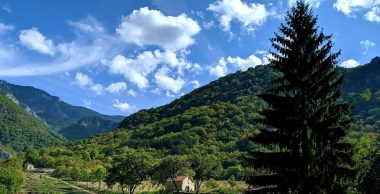 изглед - гора - бачковски манастир