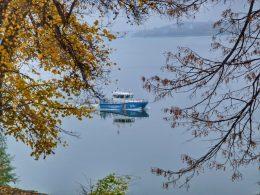 По Дунав - с лекота: мобилnа фотография на Мирослава Цветанова - заснета на 17.11.2020 край р. Дунав, граничен речен патрул гр.Видин със Samsung Galaxy Note 20 Ultra.