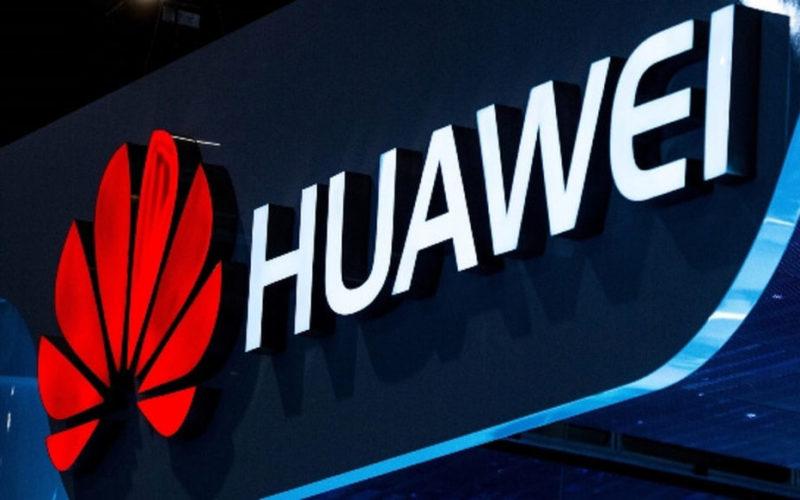 Huawei прасета свине животновъдство