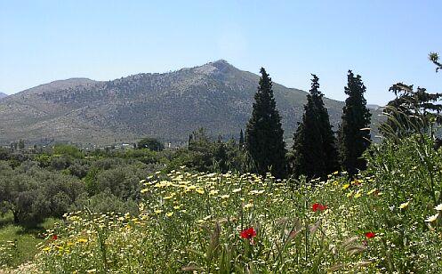Защо избрах хостинг в Jump? - полета от копър край гръцкия град Маратон